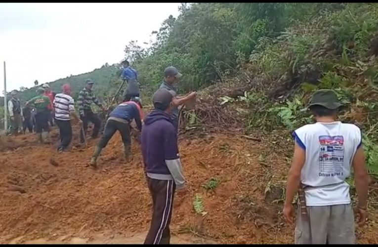 Longsor Di 2 Lokasi Tutup Jalan Di Semendo