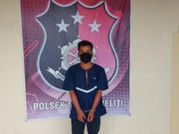 Pelaku Pemerkosa Di Kebun Karet Diringkus Polisi